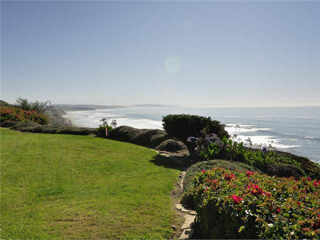 1376 S Coast Highway 101 Highway, Encinitas, CA 92024 (#120000014) :: The Marelly Group | Realty One Group