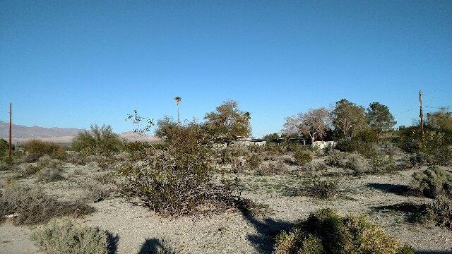 Zuni Trail #22, Borrego Springs, CA 92004 (#170044244) :: Keller Williams - Triolo Realty Group