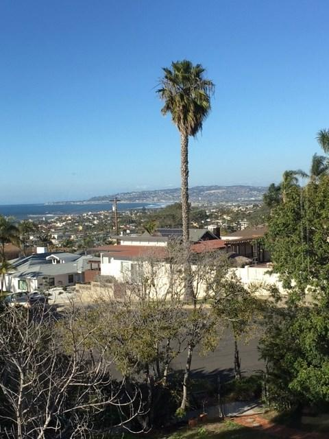 1124 Sorrento, San Diego, CA 92107 (#170053956) :: California Real Estate Direct