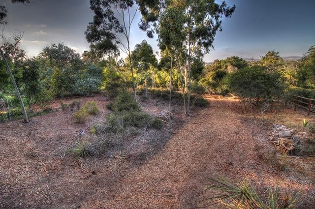 0000 Mimosa #12, Rancho Santa Fe, CA 92067 (#170055147) :: Whissel Realty