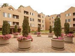 8889 Caminito Plaza Centro #7423, San Diego, CA 92122 (#170059654) :: Coldwell Banker Residential Brokerage