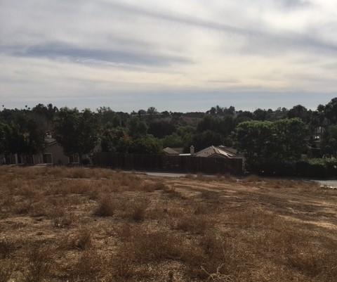 0 Devin Dr #3, Fallbrook, CA 92028 (#170060141) :: Kim Meeker Realty Group