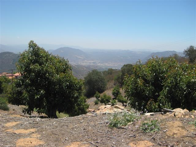 0 Rainbow Heights Rd #5, Fallbrook, CA 92028 (#170062834) :: Neuman & Neuman Real Estate Inc.
