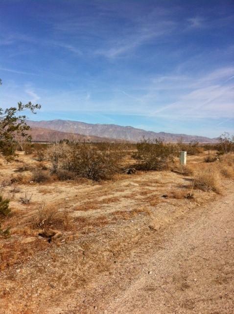 Lot 286 Palm Canyon Drive #286, Borrego Springs, CA 92004 (#180001879) :: Neuman & Neuman Real Estate Inc.