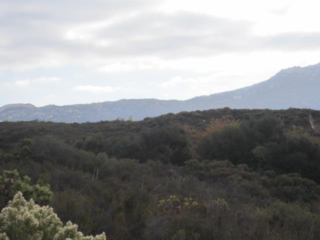0000 Montiel Truck Trail #19, Jamul, CA 91935 (#180005004) :: Keller Williams - Triolo Realty Group