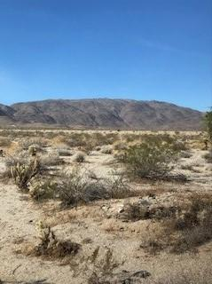 Rams Hill Dr #102, Borrego Springs, CA 92004 (#180007472) :: Ascent Real Estate, Inc.