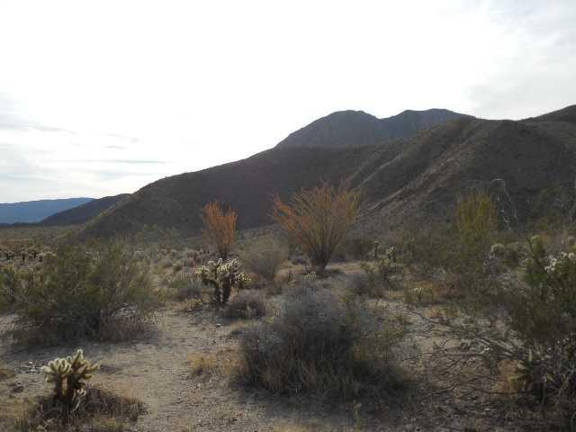 Anza Park Trail #13, Borrego Springs, CA 92004 (#180015602) :: The Yarbrough Group