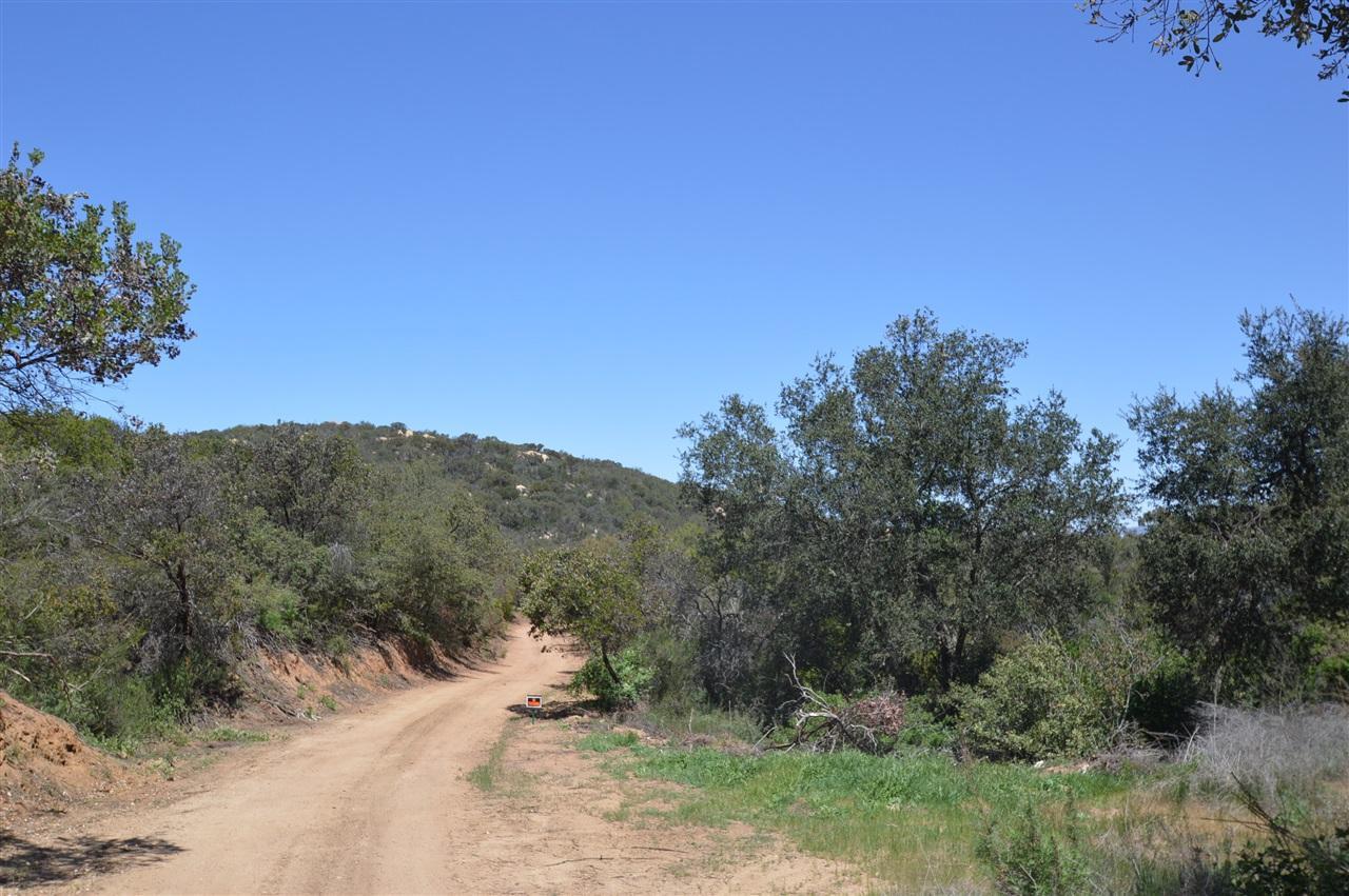 20 Acres Mark Trail - Photo 1