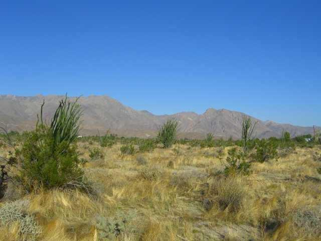 Rango Way #18, Borrego Springs, CA 92004 (#180034955) :: Jacobo Realty Group