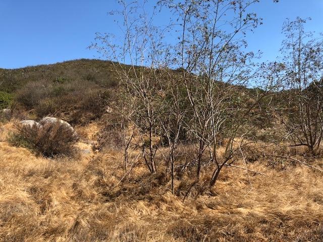 000 Rancho Villa / Hwy 78 #25, Ramona, CA 92065 (#180040945) :: The Yarbrough Group