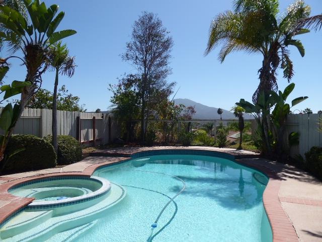 12153 Via Antigua, El Cajon, CA 92019 (#180053023) :: Ghio Panissidi & Associates