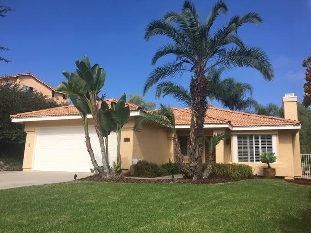 11097 Camino Abrojo, San Diego, CA 92127 (#180053527) :: The Najar Group