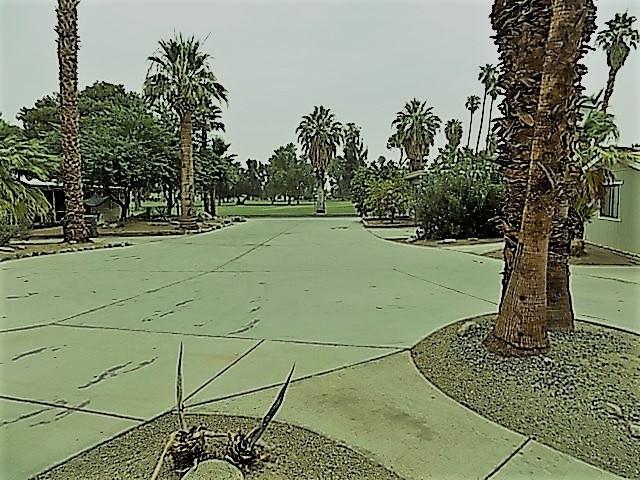 1010 Palm Canyon Dr #120, Borrego Springs, CA 92004 (#180068660) :: Neuman & Neuman Real Estate Inc.