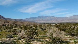 Borrego Springs #206, Borrego Springs, CA 92004 (#190006321) :: Whissel Realty