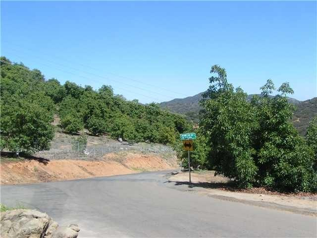 Meadow Glen Way & Cougar Pass Road N/K, Escondido, CA 92026 (#190009560) :: Cane Real Estate