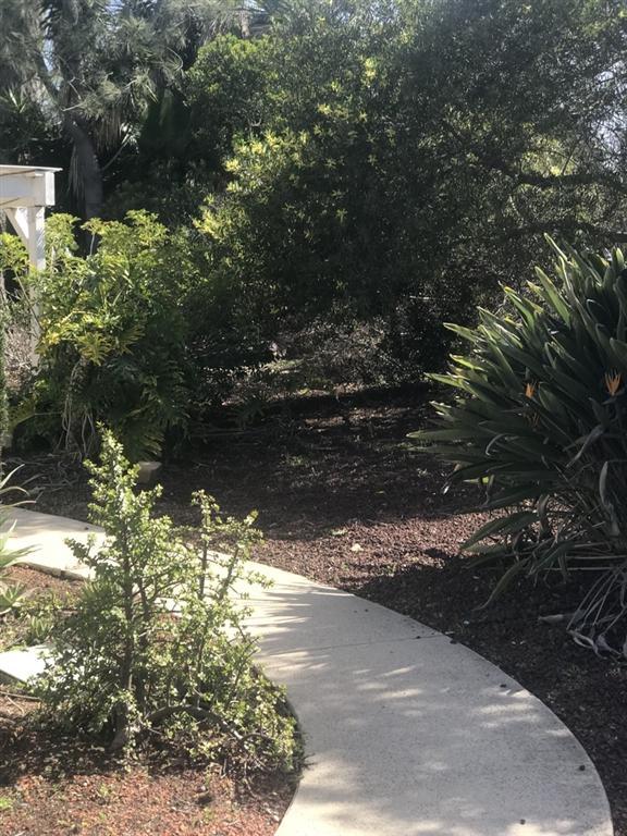 2087 Village Wood Rd, Encinitas, CA 92024 (#190013621) :: Coldwell Banker Residential Brokerage