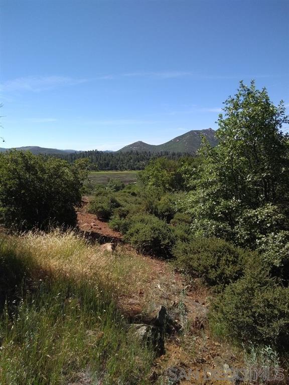 0 Papago Trail #14, Julian, CA 92036 (#190033244) :: Cane Real Estate