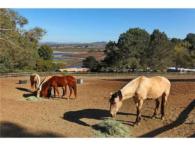 1810 San Dieguito Dr Lot 1-4 1, 2,3,4, Del Mar, CA 92014 (#190036698) :: Keller Williams - Triolo Realty Group