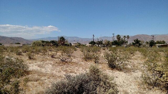 Flying U Rd #309, Borrego Springs, CA 92004 (#190038238) :: Neuman & Neuman Real Estate Inc.