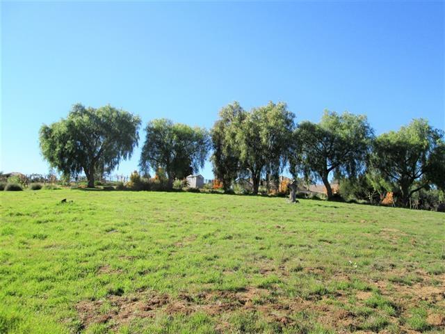 000 Via Dulcea #3, Fallbrook, CA 92028 (#190038824) :: Allison James Estates and Homes
