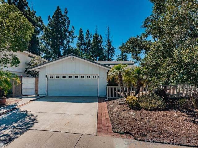 11094 Carlota Street, San Diego, CA 92129 (#190045520) :: Neuman & Neuman Real Estate Inc.