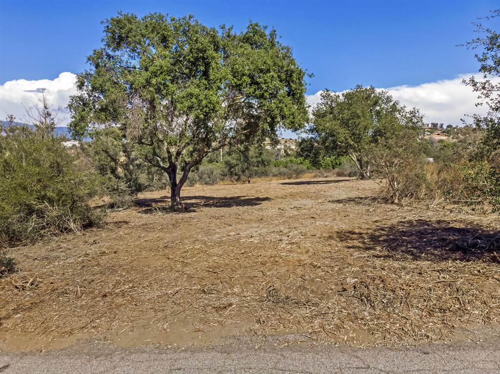 15241 Cool Valley Rd - Photo 1