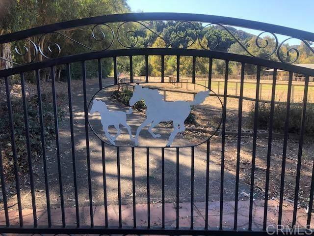 40631 De Luz Murrieta Rd, Fallbrook, CA 92028 (#190061018) :: Neuman & Neuman Real Estate Inc.