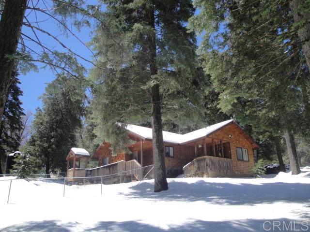 33623 Bailey Meadow Road, Palomar Mountain, CA 92060 (#190061879) :: Neuman & Neuman Real Estate Inc.