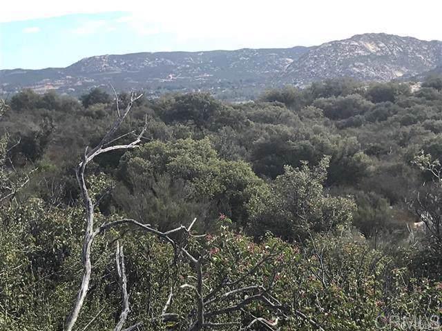 657 Tierra Del Sol Rd #0, Boulevard, CA 91905 (#190062161) :: Keller Williams - Triolo Realty Group