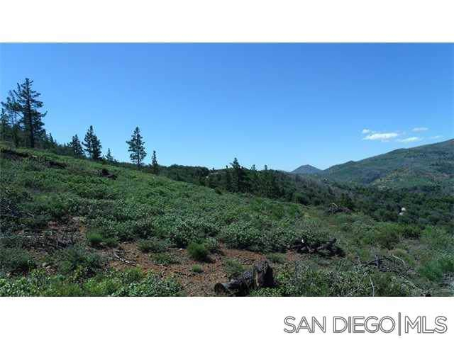 0 Highway 79 #3, Julian, CA 92036 (#190064402) :: Ascent Real Estate, Inc.