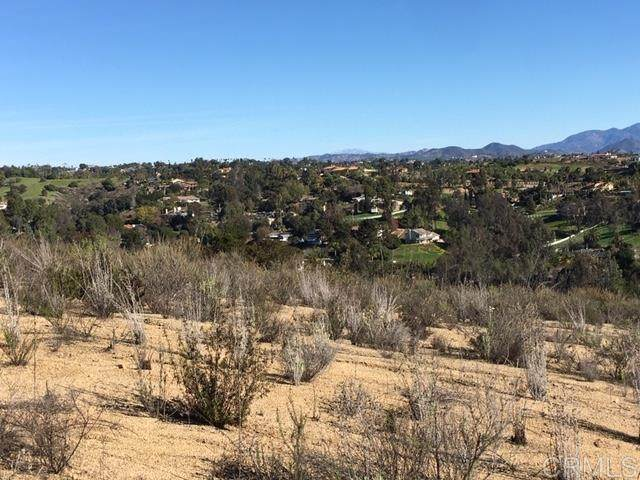 00 S Mission Rd #0, Fallbrook, CA 92028 (#200005383) :: Keller Williams - Triolo Realty Group