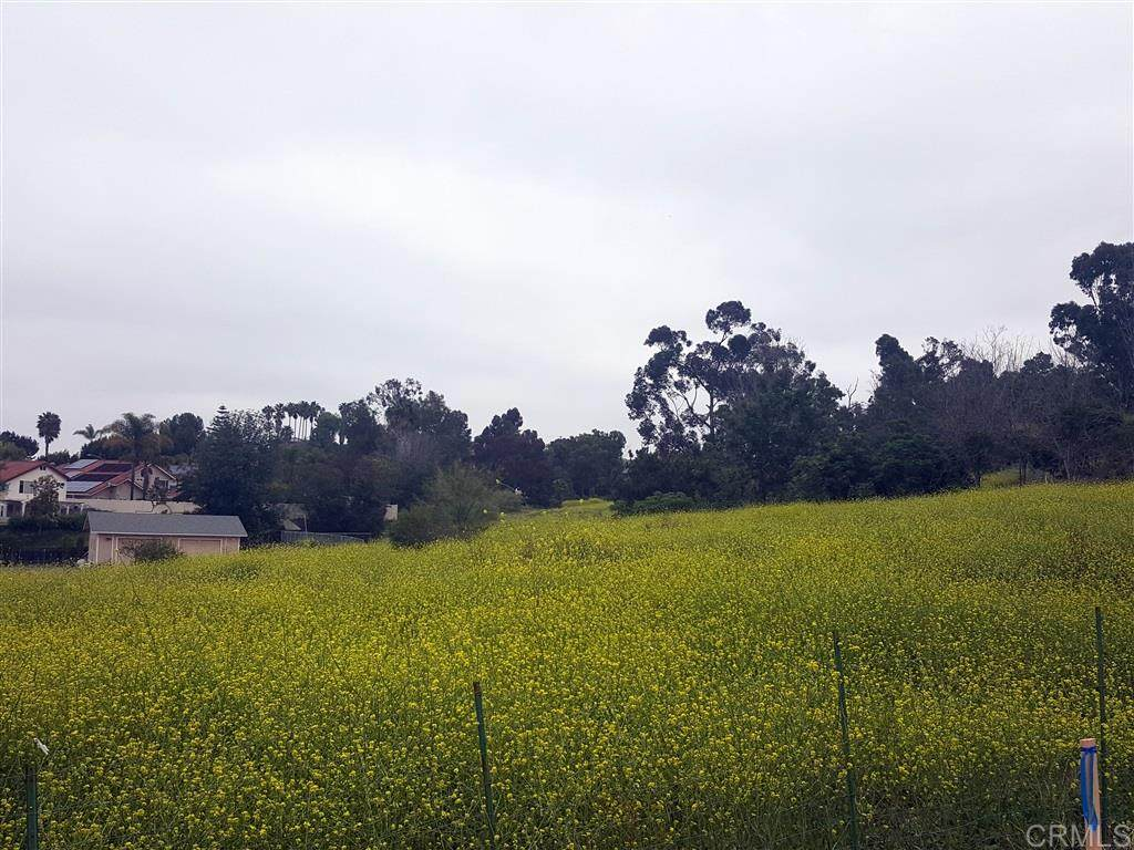 La Mirada - Photo 1