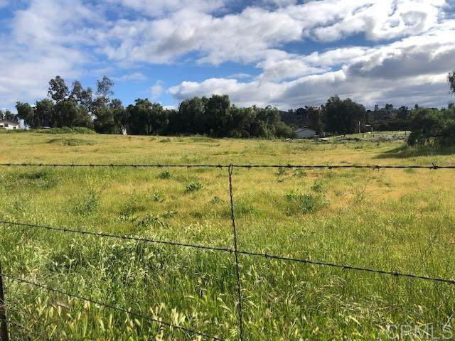 Lot 3 Mtn Holly Rd #3, Ramona, CA 92065 (#200014360) :: Neuman & Neuman Real Estate Inc.