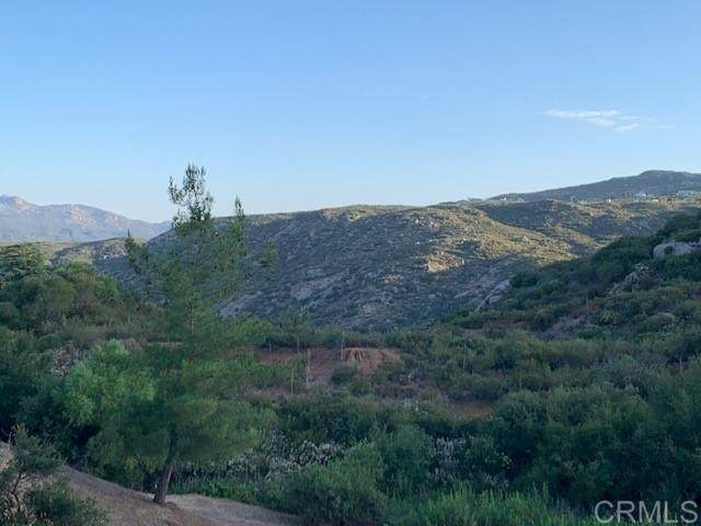 3030 N Victoria Drive, Alpine, CA 91901 (#200034320) :: Whissel Realty