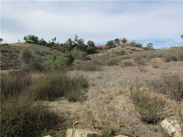 Peet Lane #0, Escondido, CA 92025 (#200044946) :: Neuman & Neuman Real Estate Inc.