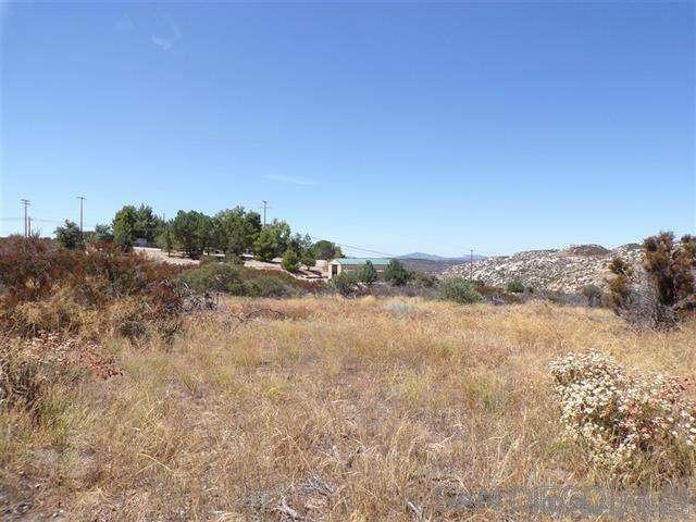 Old Highway 80 & Ridge Trail #3, Campo, CA 91906 (#210004577) :: Neuman & Neuman Real Estate Inc.