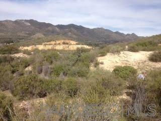 Montezuma Valley #00, Ranchita, CA 92066 (#210005978) :: Yarbrough Group