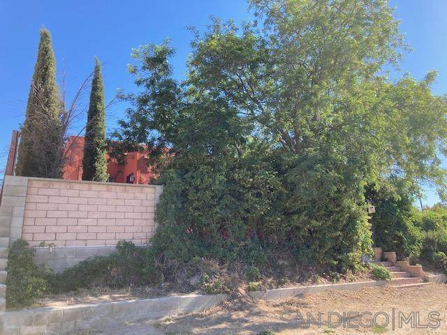 39718 Old Highway 80, Boulevard, CA 91905 (#210015463) :: Zember Realty Group