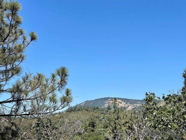 00 Banner View Dr 250-206-09-00, Julian, CA 92036 (#210021794) :: Neuman & Neuman Real Estate Inc.
