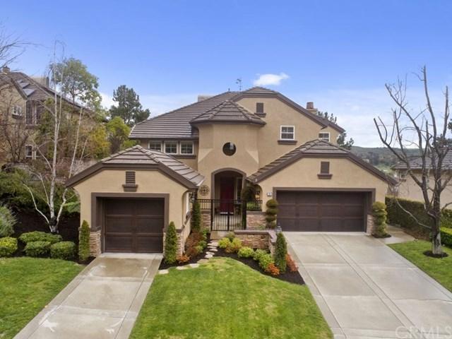 30 Birkdale Way, Coto De Caza, CA 92679 (#300973143) :: Coldwell Banker Residential Brokerage