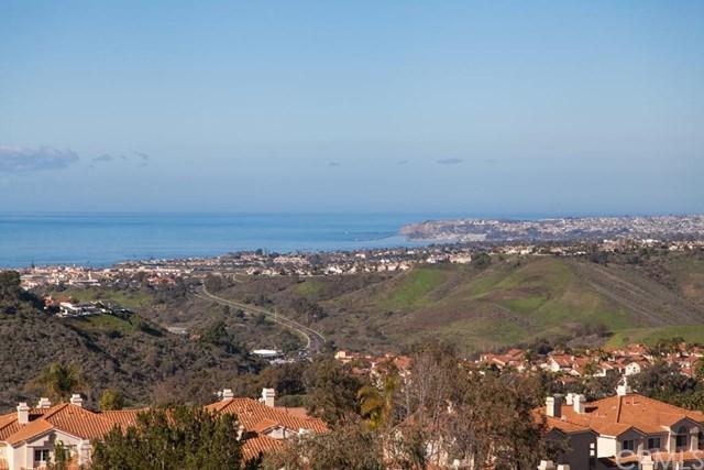 26 Finca, San Clemente, CA 92672 (#301566209) :: Coldwell Banker Residential Brokerage