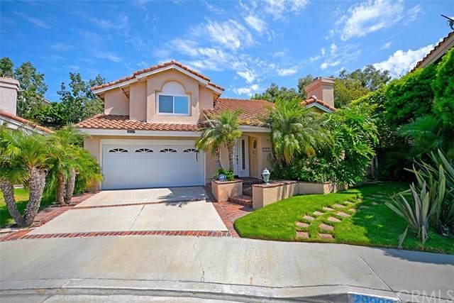 29992 Whitecap, Laguna Niguel, CA 92677 (#301612788) :: Coldwell Banker Residential Brokerage