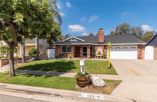 529 Pepper Tree Drive, Brea, CA 92821 (#301631012) :: Compass