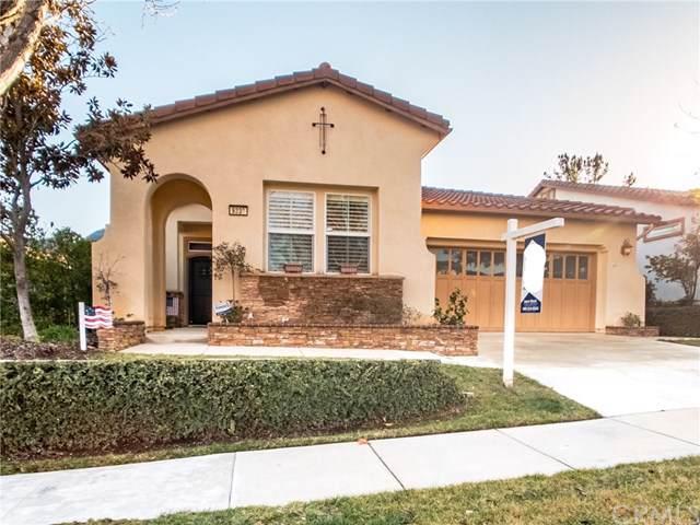 9239 Robinson Lane, Corona, CA 92883 (#301631981) :: Compass