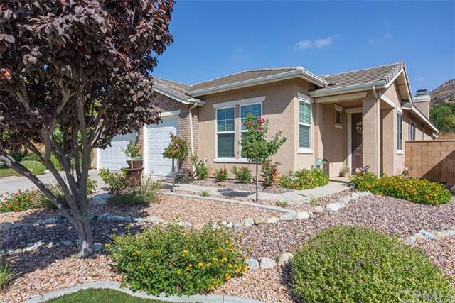 25130 Portica Court, Wildomar, CA 92595 (#301633895) :: Whissel Realty