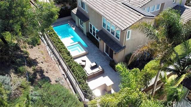 105 Via Plumosa, San Clemente, CA 92673 (#301638796) :: The Yarbrough Group