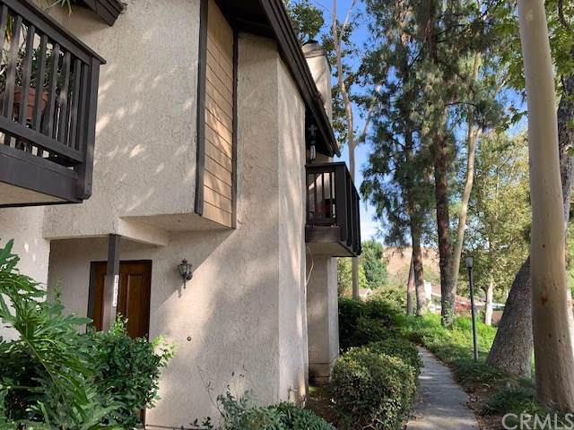 802 Via Ponte De Oro, Riverside, CA 92507 (#301639538) :: Whissel Realty