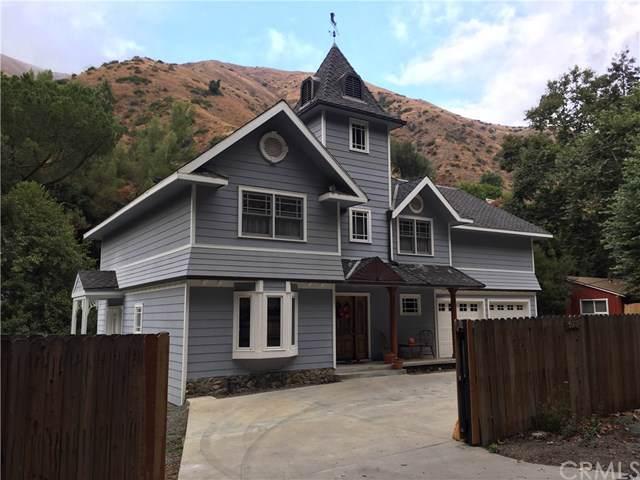 30641 Silverado Canyon Road - Photo 1
