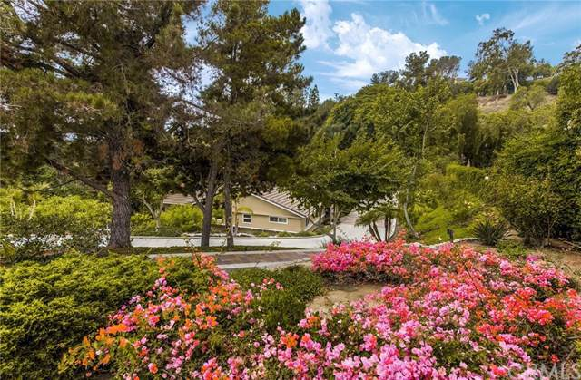 10281 Overhill Drive, North Tustin, CA 92705 (#301647132) :: The Yarbrough Group