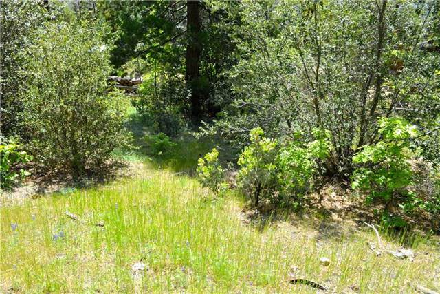 4 Granite Ridge, Bass Lake, CA 93604 (#301813395) :: Whissel Realty